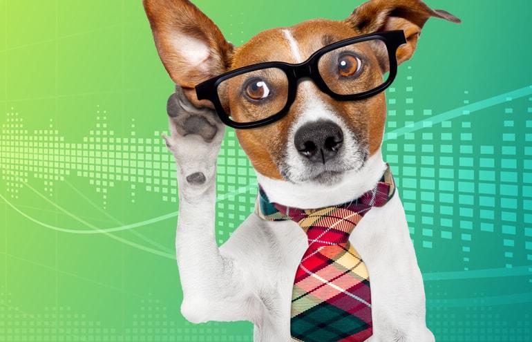 Lawyers dog better listening